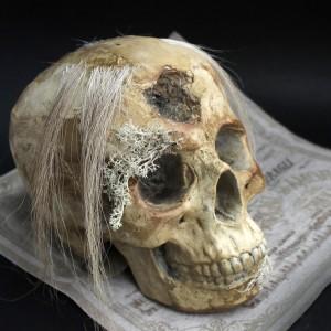 Фото Череп с остатками волос Ромильда