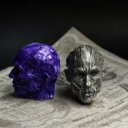 Фото Экорше голова человека мини-модель