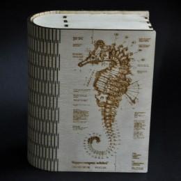 Фото Шкатулка-книга большая Hippocampus