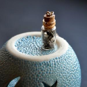 Фото Кулон-бутылочка с лишайником