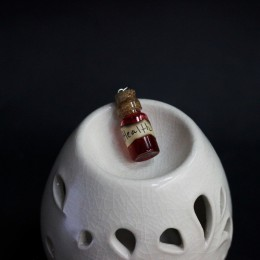 Фото Кулон красный бутылочка Здоровье - Health