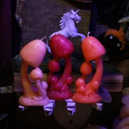 Фото Свеча грибы поганки