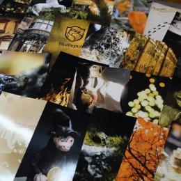 Фото Набор карточек для декора комнаты Пуффендуй