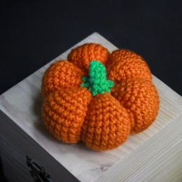 Фото Игольница оранжевая Тыковка