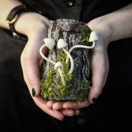 Фото Лесные Грибочки на коряге - светятся в темноте