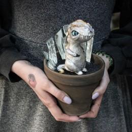 Фото Дракончик в Зазеркалье - композиция в горшке