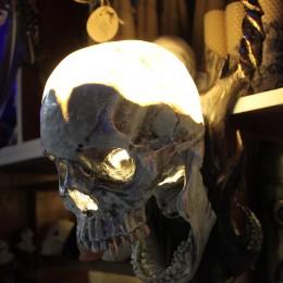 Фото Светильник - череп с рогами Люциус