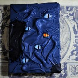 Фото Синий блокнот монстр Сатроги-Лотомири